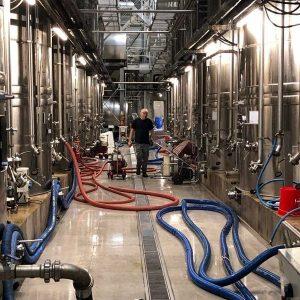 fabrication vins pays enserune