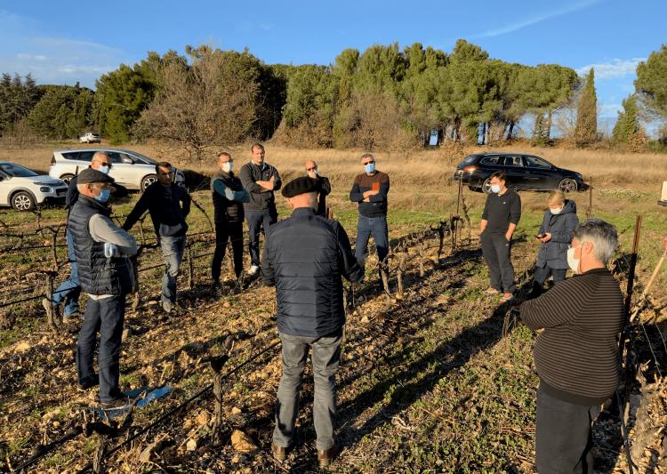 formation hve vins du languedoc